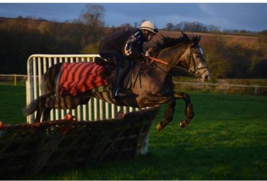 Gwafa showed a real zest for hurdling early on