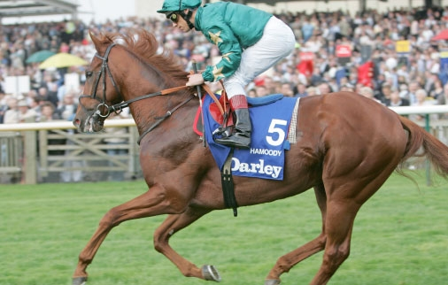Hamoody is on his way to post under Alan Munro before the Richmond Stakes