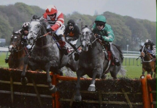 Gwafa flies the last en route to victory in the Swinton Hurdle