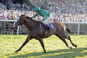 Justineo: his dam Loulwa has foaled a brother to the high-class sprinter