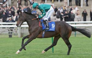 Sayif: has two colts entered in the GoffsUK Breeze-up Sale