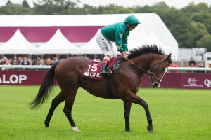 Justineo: struck in the Prix Hampton at Deauville