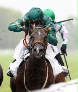 Ajaya: beaten only a head in the G2 Prix Robert Papin