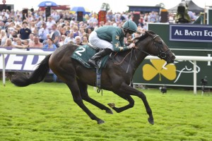 Ajaya will stand at Rathbarry Stud
