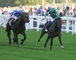 Crack sprinter Sayif defeats the older horses in the Diadem Stakes