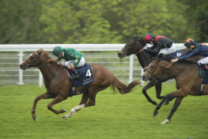 Decorated Knight, a close relation Gleneagles, is the cosy winner of the Festival Stakes