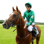 Decorated Knight; could be a force at G1 level in 2017